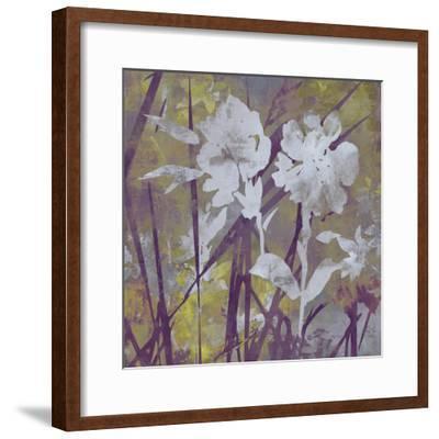 Floral Dusk II-Paul Duncan-Framed Giclee Print