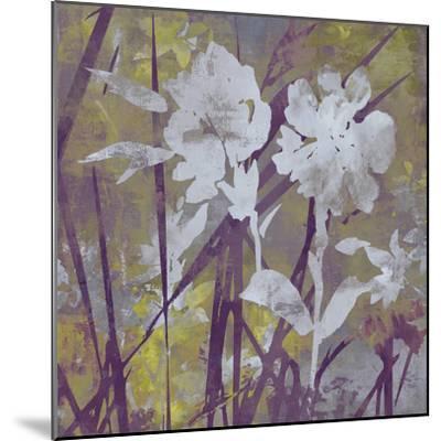 Floral Dusk II-Paul Duncan-Mounted Giclee Print