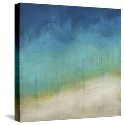 Beesands-Paul Duncan-Stretched Canvas Print