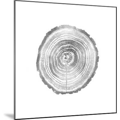 Timber Silver II-Danielle Carson-Mounted Giclee Print