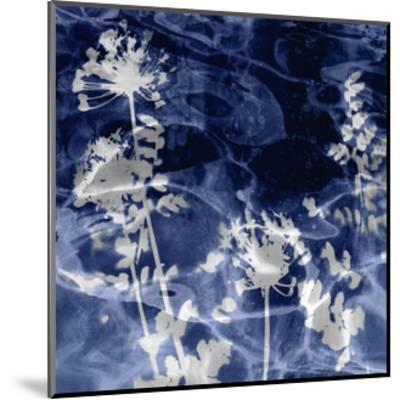 Indigo Nature II-Danielle Carson-Mounted Giclee Print