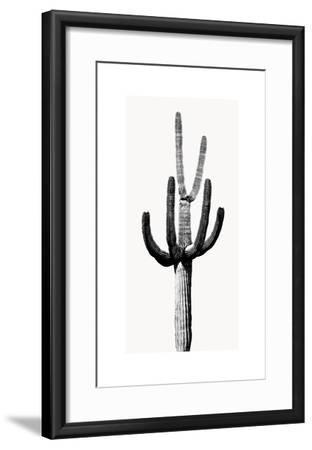 Saguaro Black & White III-Mia Jensen-Framed Giclee Print