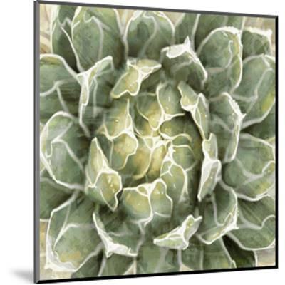 Succulent Verde III-Lindsay Benson-Mounted Giclee Print