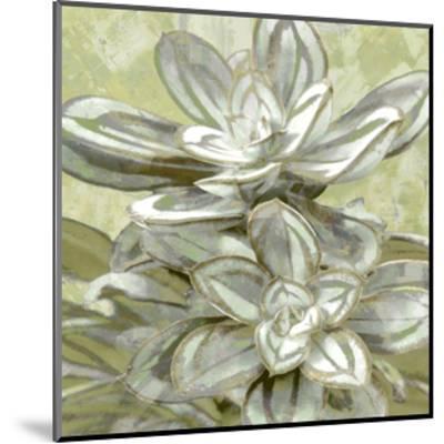 Succulent Verde IV-Lindsay Benson-Mounted Giclee Print