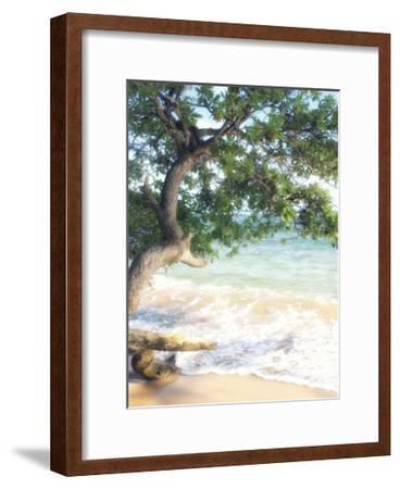 USA, Hawaii, Kauai-Savanah Plank-Framed Giclee Print