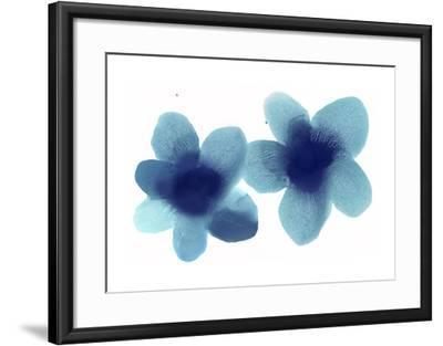 Floral Pair-Hannah Carlson-Framed Giclee Print