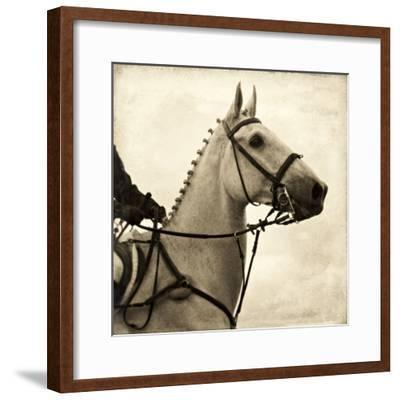 Vintage Equestrian - Counter--Framed Giclee Print
