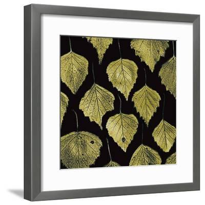 Green Leaves-PhotoINC Studio-Framed Art Print