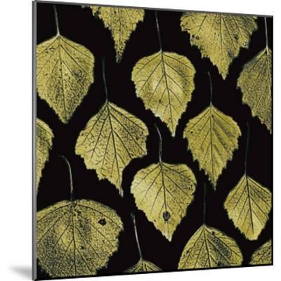 Green Leaves-PhotoINC Studio-Mounted Art Print