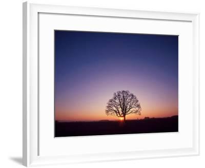 Sundown-PhotoINC Studio-Framed Art Print