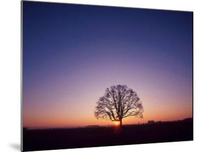 Sundown-PhotoINC Studio-Mounted Art Print