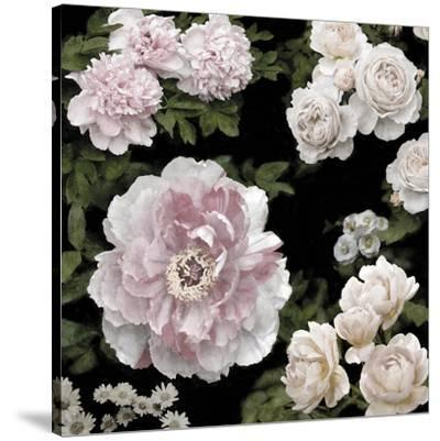 Midnight Florals-Alan Lambert-Stretched Canvas Print