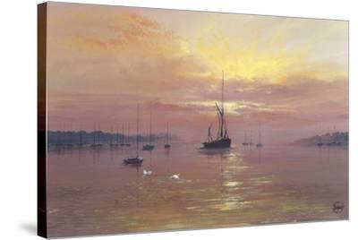 Swans Over Still Waters-Clive Madgwick-Stretched Canvas Print