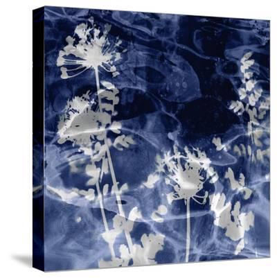 Indigo Nature II-Danielle Carson-Stretched Canvas Print