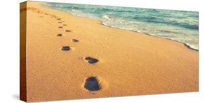 USA, Hawaii, Kauai, Kapa'a, be-Savanah Plank-Stretched Canvas Print