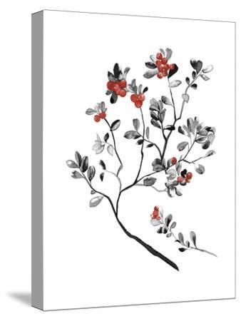 Lingonberry Branch--Stretched Canvas Print