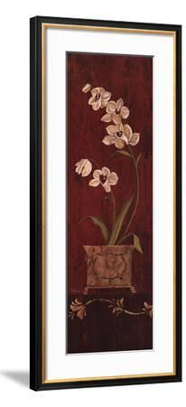Orchid Allure II-Maria Donovan-Framed Art Print