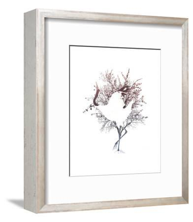Red Crowned Crane Pair, Part I-Color Me Happy-Framed Art Print