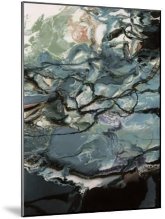 Lunar Pool-Barbara Bilotta-Mounted Art Print