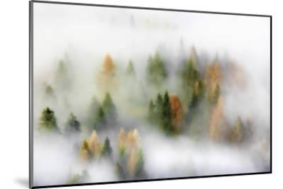 Autumn Dream-Kristjan Rems-Mounted Giclee Print