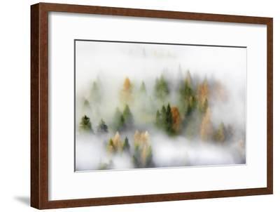 Autumn Dream-Kristjan Rems-Framed Giclee Print
