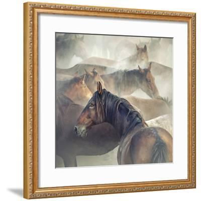 Tired Horses-Huseyin Ta?k?n-Framed Giclee Print