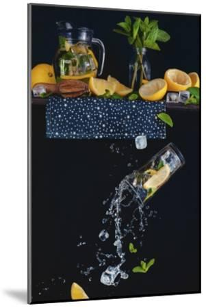 Lemonade From The Top Shelf-Dina Belenko-Mounted Giclee Print