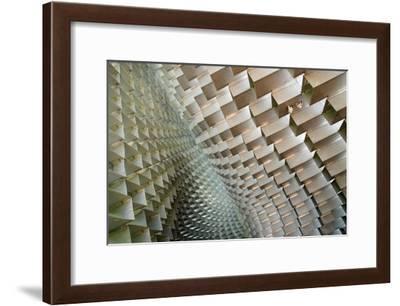 Serpentine-Linda Wride-Framed Giclee Print