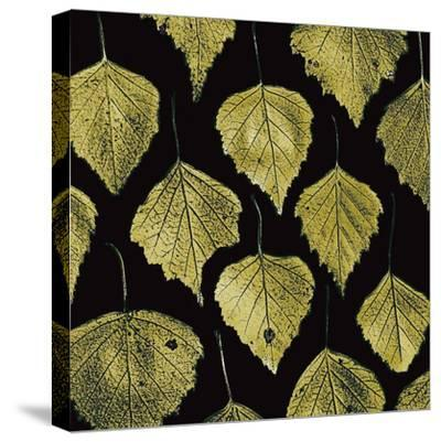 Green Leaves-PhotoINC Studio-Stretched Canvas Print