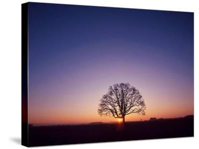 Sundown-PhotoINC Studio-Stretched Canvas Print
