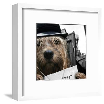Dog Dylan-Noah Bay-Framed Art Print