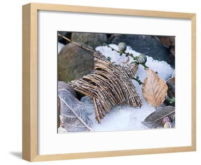 Christmas Nature-Lebens Art-Framed Art Print