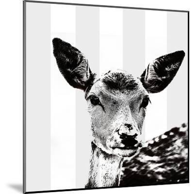 Deer Black And White - Square-Lebens Art-Mounted Art Print