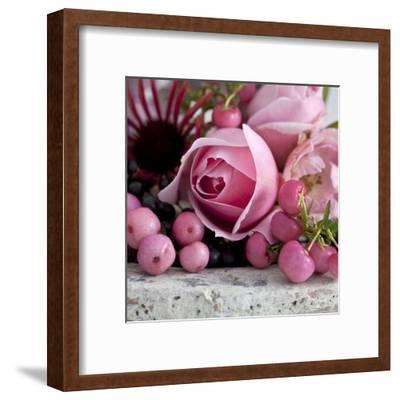 Pink Rose - Square-Lebens Art-Framed Art Print