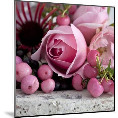 Pink Rose - Square-Lebens Art-Mounted Art Print