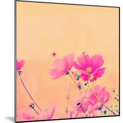 Summer Flower 2 - Square-Lebens Art-Mounted Giclee Print