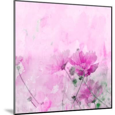 Summer Flower 4 - Square-Lebens Art-Mounted Giclee Print