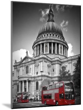 London St Pauls Cathedral & Red Bus-Melanie Viola-Mounted Art Print