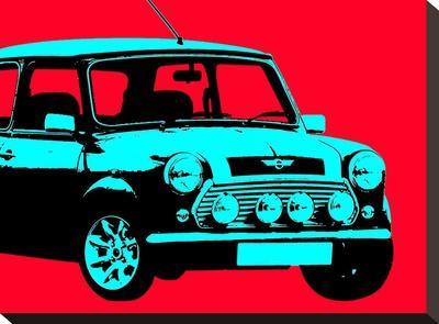 Mini Red-Indigo Sage Design-Stretched Canvas Print