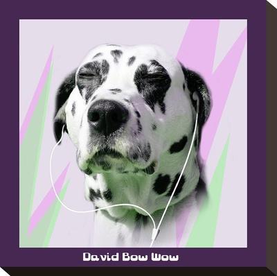 David Bow Wow-Noah Bay-Stretched Canvas Print
