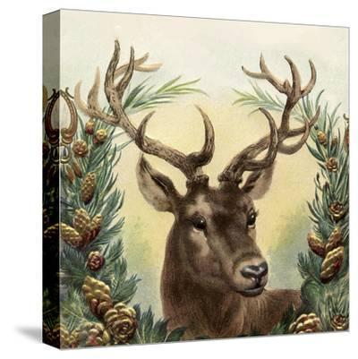 Vintage Deer - Square-Lebens Art-Stretched Canvas Print