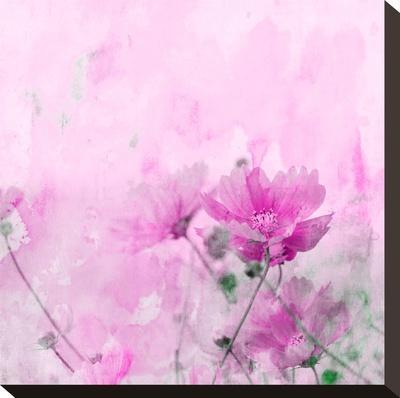 Summer Flower 4 - Square-Lebens Art-Stretched Canvas Print