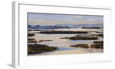 Quiet Marshes-Tania Bello-Framed Giclee Print