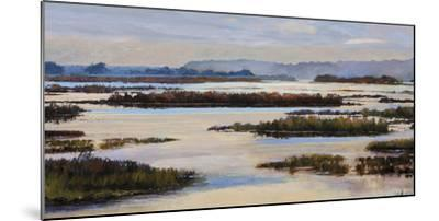 Quiet Marshes-Tania Bello-Mounted Giclee Print
