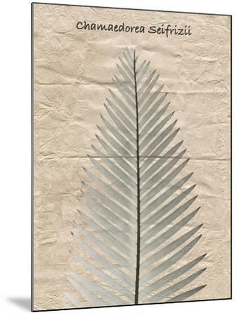 Chamaedorea Illustration-Albert Koetsier-Mounted Art Print
