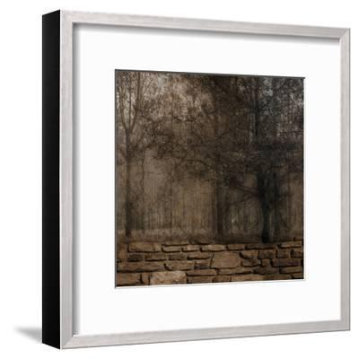 Stone Wall Landscape 2-Sheldon Lewis-Framed Art Print