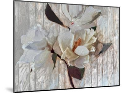 Magnolia1-Sarah Butcher-Mounted Art Print