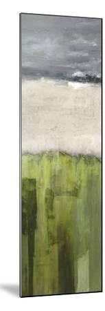 Strata - Colorado-Paul Duncan-Mounted Art Print