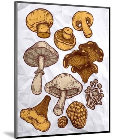 Mushroom Variation-Color Me Happy-Mounted Art Print