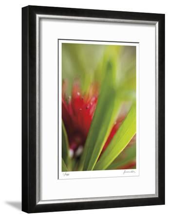 Botanical 1-Florence Delva-Framed Limited Edition